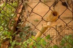 Uitstekende Vuile pvc-Klep Plastic Pijp - Rusty Old Wire Fence - Groene Installaties stock afbeelding