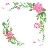 Uitstekende Waterverf Rose Corners Stock Afbeelding