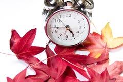 Uitstekende wekker en rode esdoornbladeren op een witte achtergrond De komst van de herfst stock foto