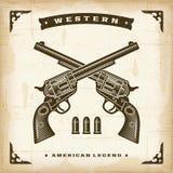 Uitstekende Westelijke Revolvers Stock Afbeeldingen