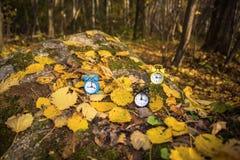 Uitstekende zwarte wekker op de herfstbladeren De abstracte foto van de tijdverandering royalty-vrije stock fotografie