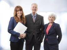 Uitvoerend Commercieel Team Stock Afbeelding