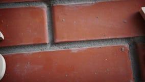 Uitwisselingsclassificatie Tekens van muntendollar en Yen op bakstenen muur stock footage