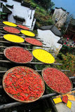 Ujawnienie uprawy w jesień sezonie przy Huanglin wioską obrazy stock