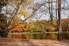 Ujazdowski Park in Warsaw. Autumn trees by the pond in the Ujazdowski Park, city center of Warsaw, Poland royalty free stock photo