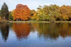 Ujazdowski Park in Warsaw Royalty Free Stock Images