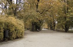 Ujazdowski Park in Warsaw - a wide park avenue in autumn. Ujazdowski Park in Warsaw - park avenues in autumn, trees in autumn colors stock image