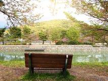 Uji河日本 库存图片