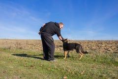 Ukąszenia psa ręka Obrazy Stock