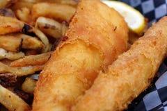 układ scalony ryba obraz stock