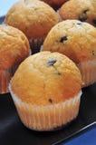 Układ scalony czekoladowi muffins Fotografia Royalty Free