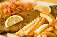 układ scalony ryba Fotografia Royalty Free