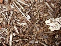 układ scalony tekstury drewno Fotografia Stock