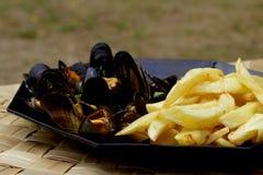 Układy scaleni i mussels Obraz Stock