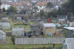 Uk Allotments Showing Social Housing Stock Photography