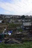 Uk Allotments Showing Social Housing Royalty Free Stock Photo