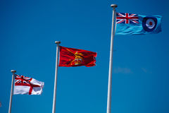 Uk Armed forces flags. The free main uk armed forces flags ,Royal navy, Army, Royal Air Force Royalty Free Stock Image