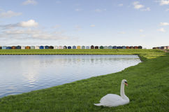 UK beach huts - Essex Stock Photography