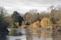 UK-bygdflod som är medway nära Maidstone Kent Royaltyfri Fotografi