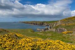 UK Coast Wales Stock Photo