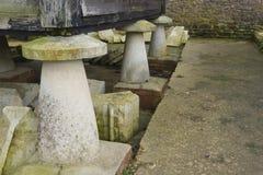UK-engelska Staddle stenar den understödjande träladugården. Arkivbild