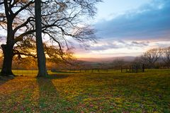 Beautiful fall view through trees of typical english landscape royalty free stock photo