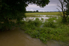 2012 UK Floods. UK Bedfordshire -- 14 Jul 2012 -- Flooded land in North Bedfordshire after the deluge of rain in July 2012 -- Picture by Jonathan Mitchell/ Royalty Free Stock Photography