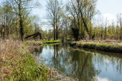 UK habitats river course. UK habitats natural river course with associated trees and marginals Stock Photos