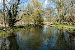 UK habitats river course. UK habitats natural river course with associated trees and marginals Royalty Free Stock Photography
