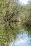 UK habitats river course Royalty Free Stock Photos