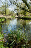 UK habitats river course. UK habitats natural river course with associated trees and marginals Stock Image