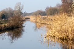 UK habitats Water course and marginals Stock Photo