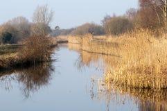 UK habitats Water course and marginals. UK habitats freshwater stream with species rich marginal vegetation Stock Photo