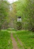 UK Habitats woodland ride Royalty Free Stock Photo