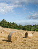 Uk Harvest Stock Images