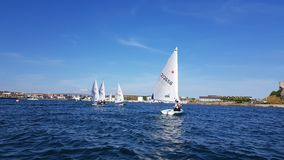 UK National and Open Laser Championships at Mount Batten Centre for Watersports Royalty Free Stock Photos