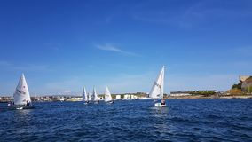 UK National and Open Laser Championships at Mount Batten Centre for Watersports Stock Photo
