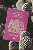 UK Passport. United Kingdom of Great Britain and Northern Ireland European Union Biometric Passport Stock Photos