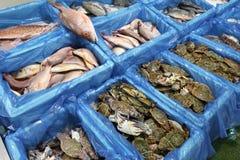 UK sea food. Sea food at Billingsgate Fish Market in Poplar, London, UK royalty free stock photography