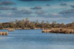 UK siedlisko - rezerwuar w zimie Obraz Royalty Free