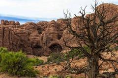 Łuki parki narodowi, Utah, usa Fotografia Stock