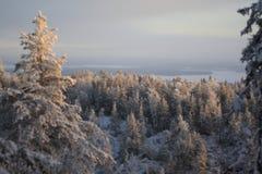 Ukko Koli, Finland, jaar 2008 Stock Afbeelding