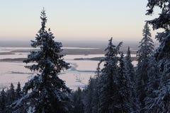 Ukko Koli, Finland, jaar 2008 Stock Foto's