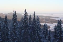 Ukko Koli, Finlande, année 2008 Photographie stock libre de droits