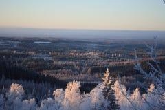 Ukko Koli, Finlandia, anno 2008 Immagine Stock