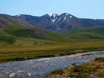 ukok för floder för altaibergplatå Arkivfoton
