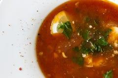 Ukraińska lub Rosyjska borscht polewka obrazy stock