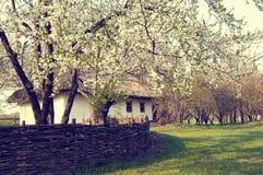 Ukraińska wioska w wiośnie Fotografia Stock