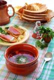 Ukraińscy i Rosyjscy krajowi kuchnia barszcze Zdjęcia Royalty Free