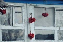 Ukraiński okno Obraz Stock